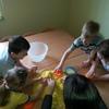 Zabawy badawcze z rodzicami-króliczki