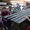 Motylki w Strusiolandii - Dzień Dziecka