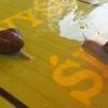 Z wizytą w krainie ślimaka.