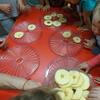 Robimy chipsy z jabłek