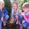 Projekt Edukacyjny ,,Posadź drzewo. Podaj dalej